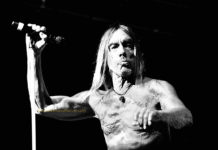 Picture of Iggy Pop in concert taken by Dianne Brooks