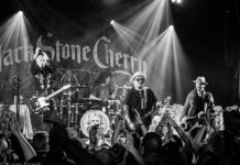 Picture of Black Stone Cherry in concert with Denmark concert photography by Kasper Pasinski