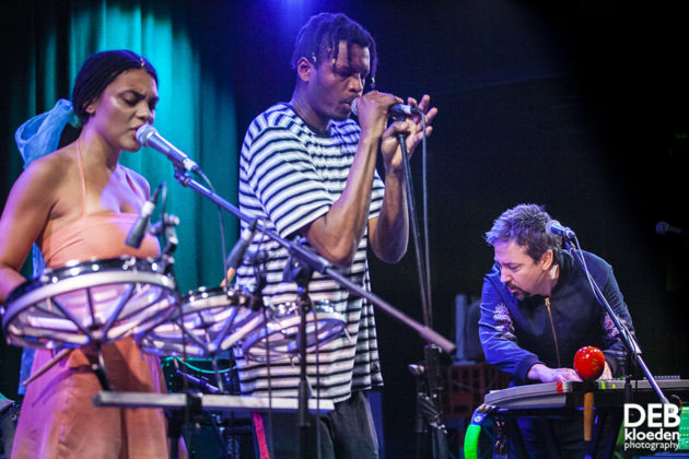 Picture of The Adults in concert by Australia music photographer Deb Kloeden
