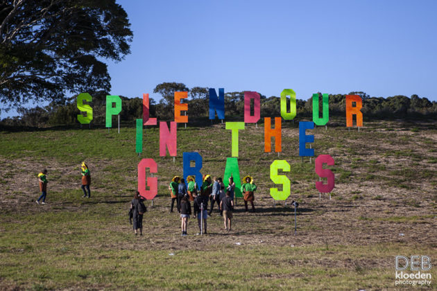 Picture of the Splendour in The Grass Festival by Australia music photographer Deb Kloeden