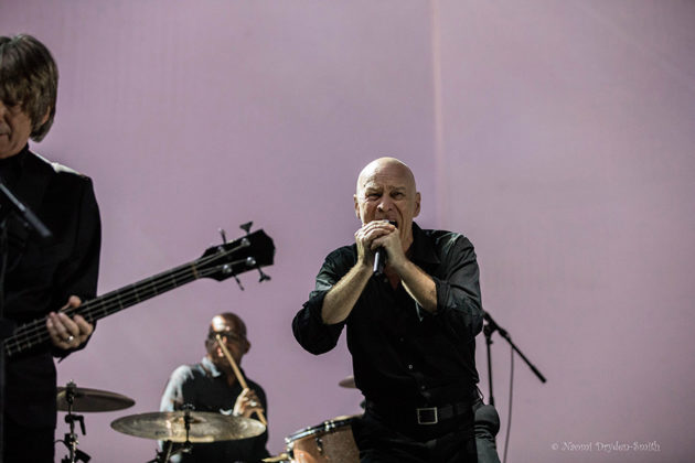 The The in concert in London by England Music and Pit photographer Naomi Dryden-Smith