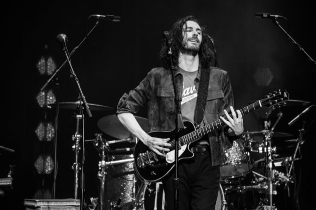 Picture of the blues musician Hozier in concert taken by Danni Fro