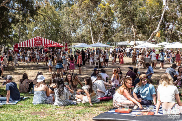Picture of the Wine Machine Festival in Australia taken by Deb Kloeden
