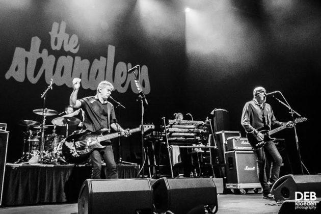 Picture of The Stranglers in concert taken by Deb Kloeden