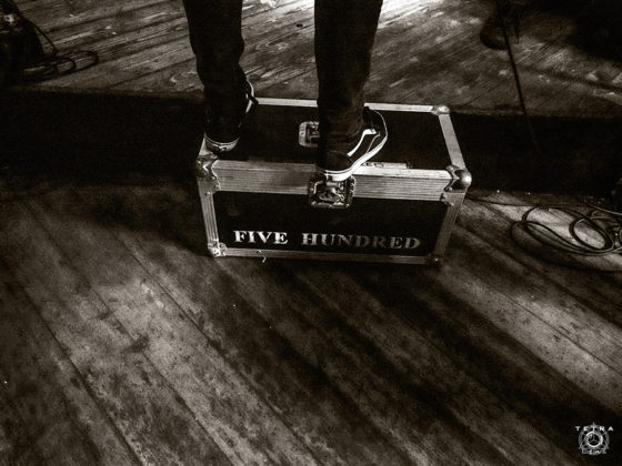 Picture of The Five Hundred by Emma Bauer